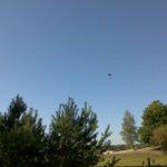 Fallschirmspringer auf dem Senneflugplatz bei Lippspringe